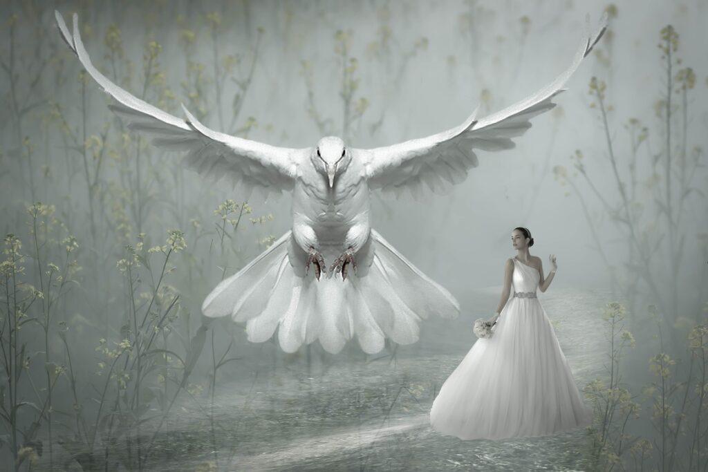 magie albă în Câmpina