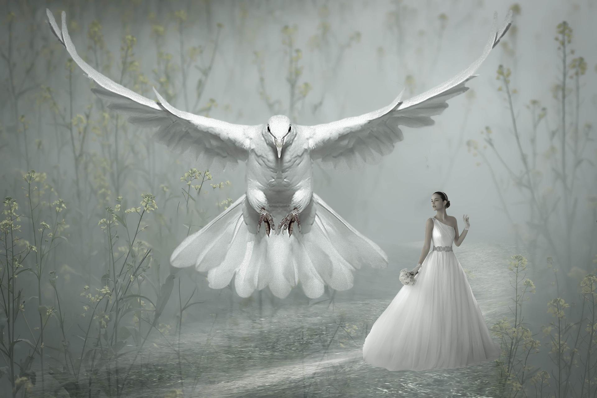 Remedii magie albă în Carei
